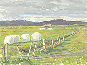 H.D. Tylle - Wrapped Hay Bales, Icleand, 08/10/1991, 12 x 16 inch, oil on cardboard<br><a  style=&#34;color:#969&#34;  href=&#34;mailto:info@tylle.de?subject=price inquiry: 48  Wrapped Hay Bales&#34;>price inquiry</a>